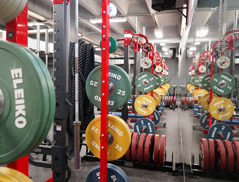 Squat racks and free weights